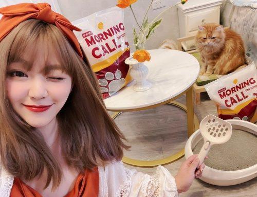 [寵物] MORNING CALL早安貓砂 ♥ 快速凝結鎖住臭味 貓奴必備好用礦砂推薦ヽ(・ω・`)