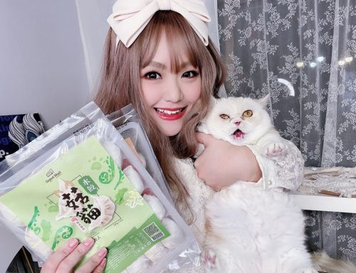 [美食] Goodmall菇貓餃子系列 ♥ 菇貓水餃 V.S 藜貓水餃 ♥ 食在安心的天然無毒好味道 今晚我想來點貓貓口味的餃子ヽ(・ω・`)
