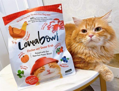 [寵物] Loveabowl 囍碗無穀天然糧 ♥ 加拿大產地直送 含有雪蟹和龍蝦的優質無穀貓飼料 ▶ 寵物主食罐推薦 ⊂(・ω・*⊂)
