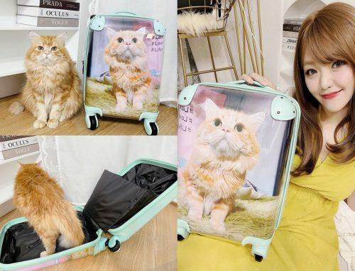 [生活] KUSDOM 客製化禮物 ♥ 一個也能接單訂作 GET我的夢幻貓咪行李箱 ♥ 送給他獨一無二的用心 情人節禮物│生日禮物推薦ヽ(・ω・`)